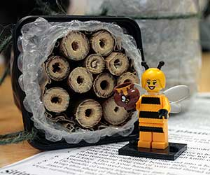 A finished bee home