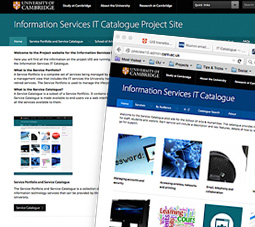 The IT Services Catalogue project and alpha demo websites